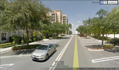 Fern_Street_view_publix