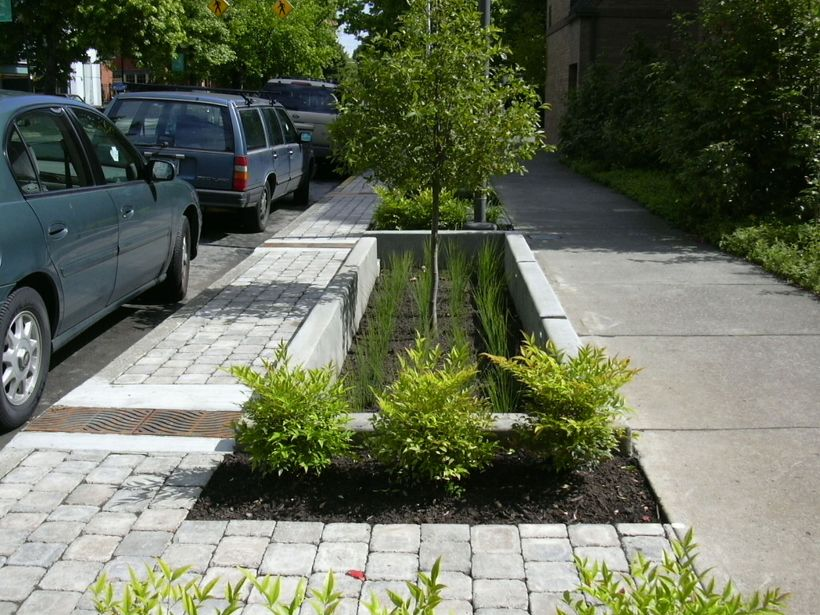 SW 12th Street bioswale, Photo by Kevin Perry, Bureau of Environmental Services, City of Portland