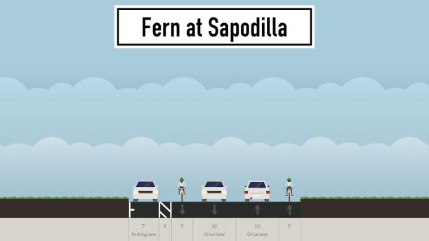 fern-at-sapodilla.png